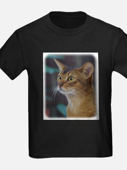 Abyssinian Cat AA025D-018 T