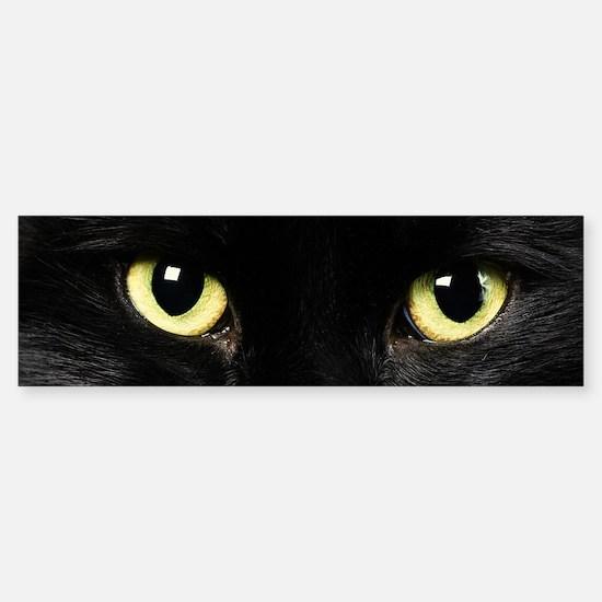 Black Cat Eyes Sticker (Bumper)