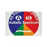 Autistic Spectrum symb Rectangle Magnet (100 pack)