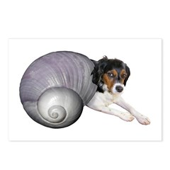 Shell Dog Postcards (Package of 8)