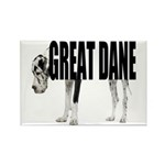 Great Dane Rectangle Magnet (100 pack)