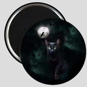 Cat under Full Moon Magnet