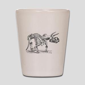 Triceratops Skeleton Shot Glass