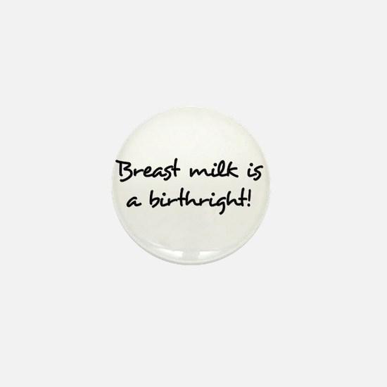 Breast Milk Is A Birthright Mini Button