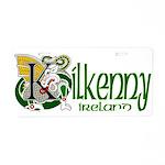 Kilkenny Aluminum License Plate