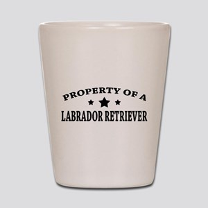 Property of Lab Shot Glass