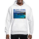 Success Hooded Sweatshirt
