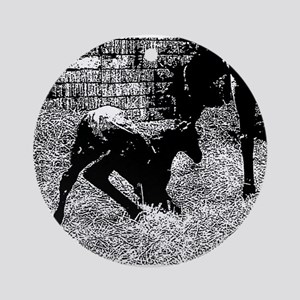 AFTM Foal getting up BW Round Ornament