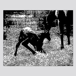 AFTM Foal getting up BW Posters