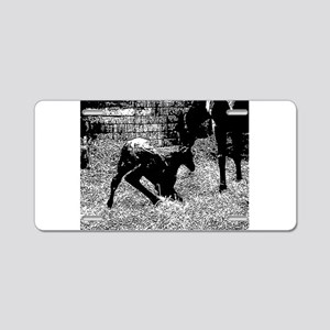 AFTM Foal getting up BW Aluminum License Plate