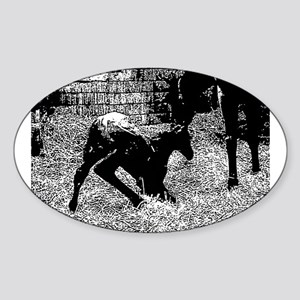 AFTM Foal getting up BW Sticker