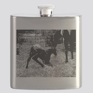 AFTM Foal getting up BW Flask