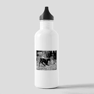 AFTM Foal getting up BW Water Bottle