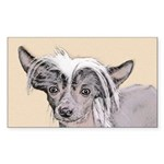 Chinese Crested (Hairles Sticker (Rectangle 50 pk)