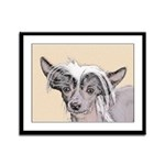 Chinese Crested (Hairless) Framed Panel Print