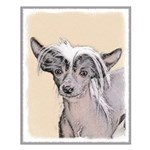 Chinese Crested (Hairless) Small Poster