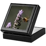 Bee on Lavender - Keepsake Box