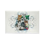 Cuddly Kittens Rectangle Magnet (100 pack)