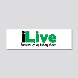 iLive Kidney Car Magnet 10 x 3
