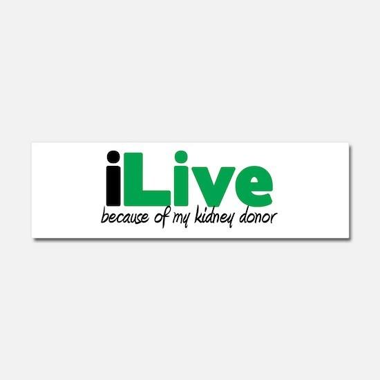 iLive Kidney Car Magnet 10 x 3