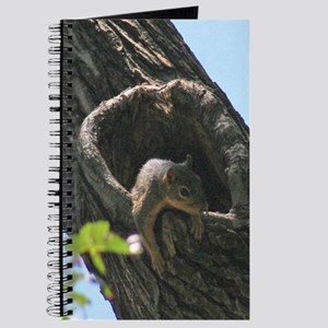 Just Hanging Around Squirrel Journal