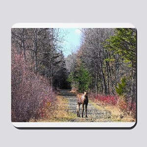 Scenic Cartoon Moose Mousepad