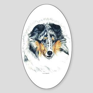 Blue Merle Shetland Sheepdog Oval Sticker