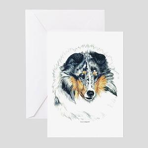 Blue Merle Shetland Sheepdog Greeting Cards (Packa