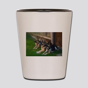GSD-9 Shot Glass