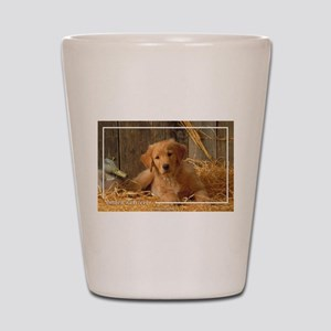 Golden Retriever-6 Shot Glass