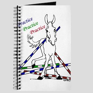 Trail Class Mule Journal