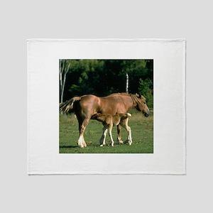 Nursing Foal Throw Blanket