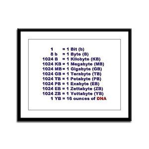 """""""DNA Magnitude"""" Framed Panel Print"""