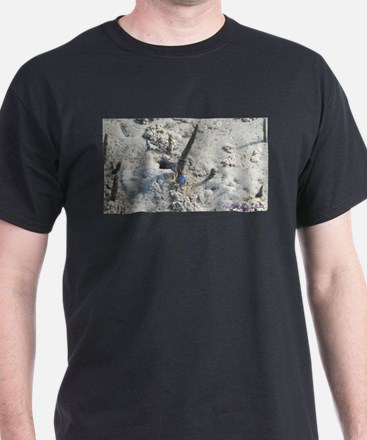 Soldier Crab At Northshore T-Shirt