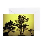Foggy Yellow Sunset - Greeting Cards (Package of