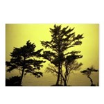 Foggy Yellow Sunset - Postcards (Package of 8)