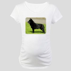 Schipperke 9W021D-022 Maternity T-Shirt