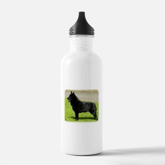 Schipperke 9W021D-022 Water Bottle