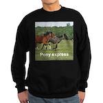 Ponies sweatshirt (dark)