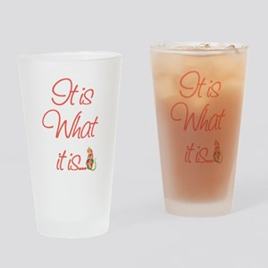 Cat Lovers It is what it is Drinking Glass