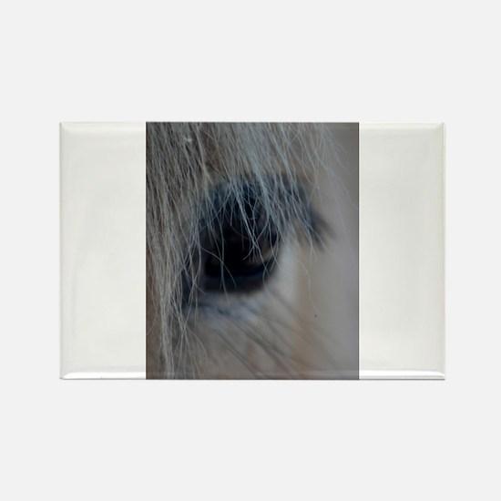 Unique Fjord horse Rectangle Magnet
