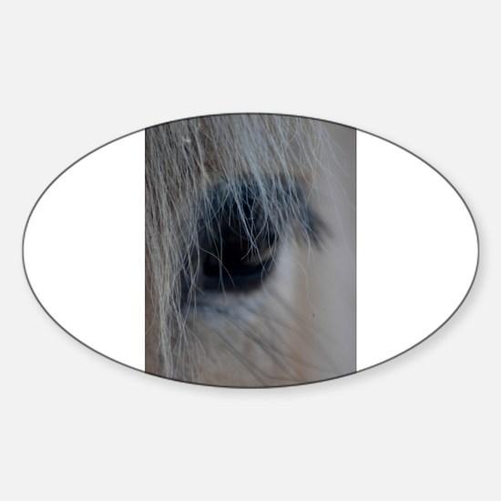 Cute Fjord horse Sticker (Oval)