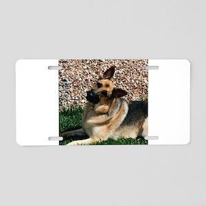 Quizzical German Shepherd Dog Aluminum License Pla