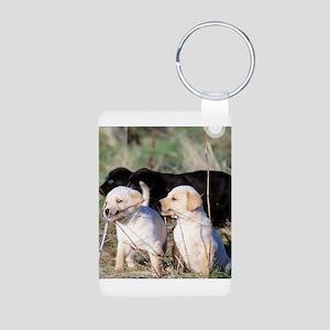 Labrador Puppies Aluminum Photo Keychain