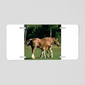 Nursing Foal Aluminum License Plate