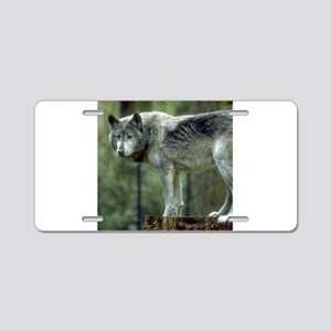 Wolf on tree stump Aluminum License Plate