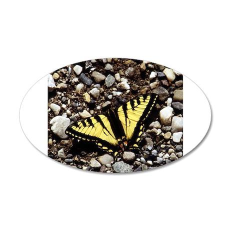 Western Tiger Swallowtail (4) 38.5 x 24.5 Oval Wal