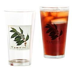 Coffee Botanical Print Drinking Glass