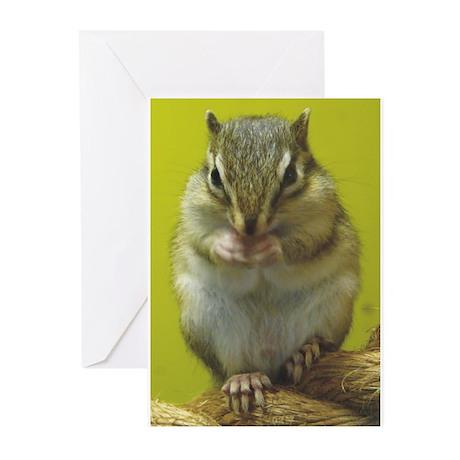 Chipmunk Greeting Cards (Pk of 20)