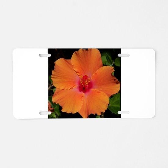 Hibiscus Flower~eccopatterns. Aluminum License Pla